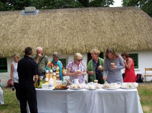Pilgrims enjoy refreshments at Irish National Stud on way to St. Brigid's well