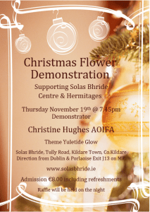 Christmas Flower Demonstration