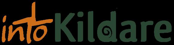 intokildare logo image